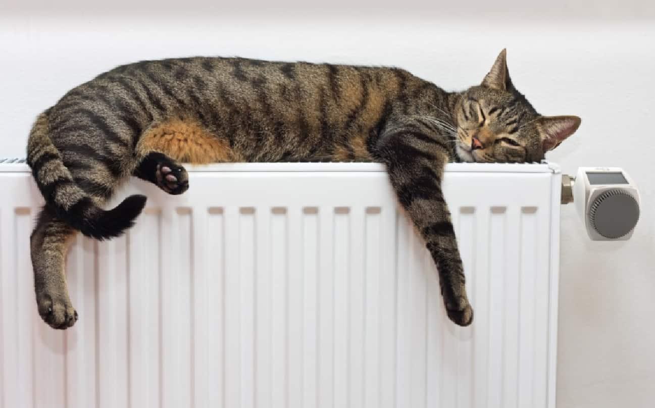 TOP 5 SOLUȚII: Cum să ai casa încălzită cu bani puțini