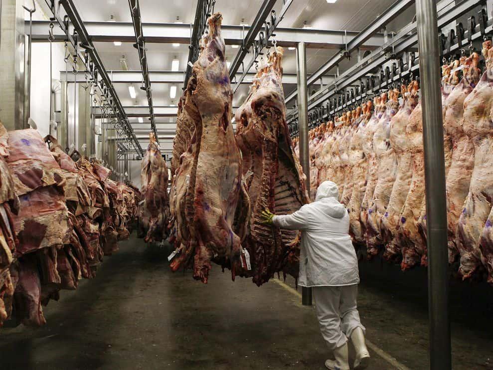 Declarație ONU: O alimentație vegetariană ar putea eradica foametea