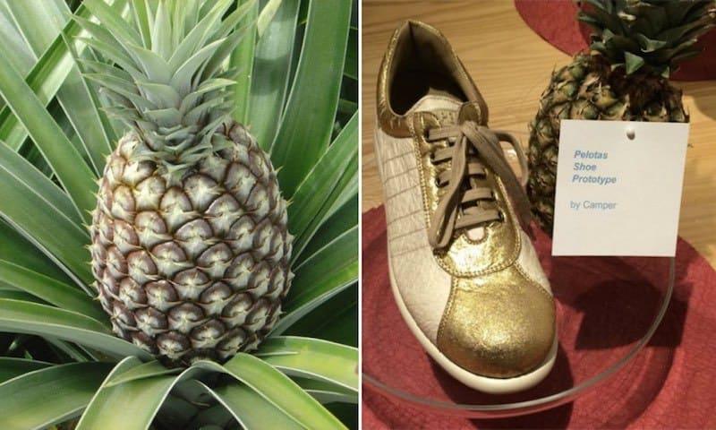 Piñatex – pielea ecologică din frunze de ananas