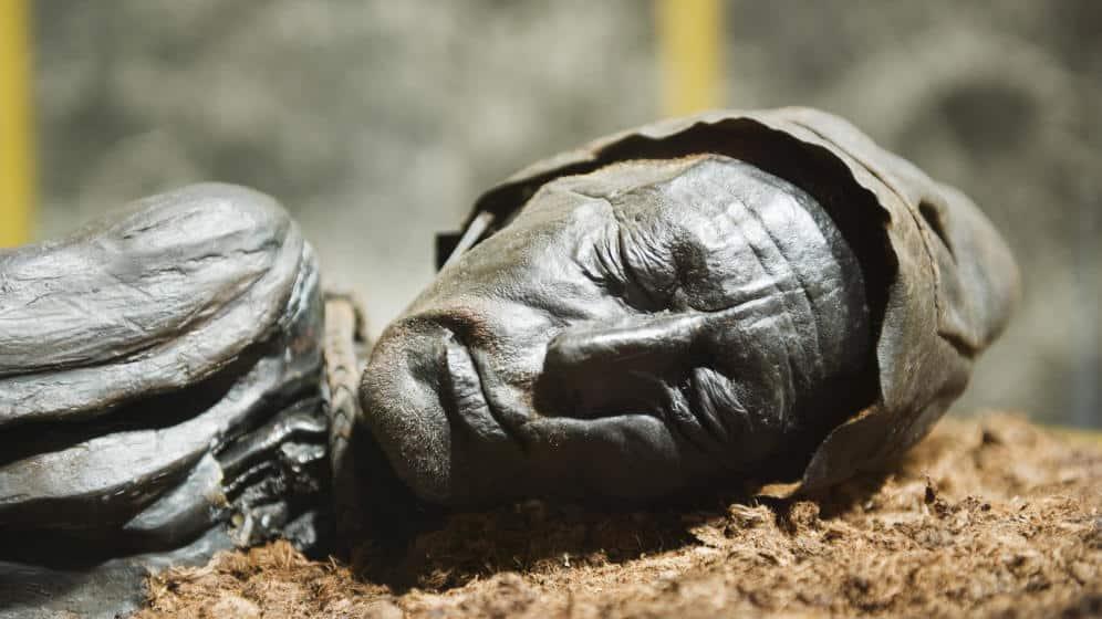 Misterul cadavrelor din mlaștină