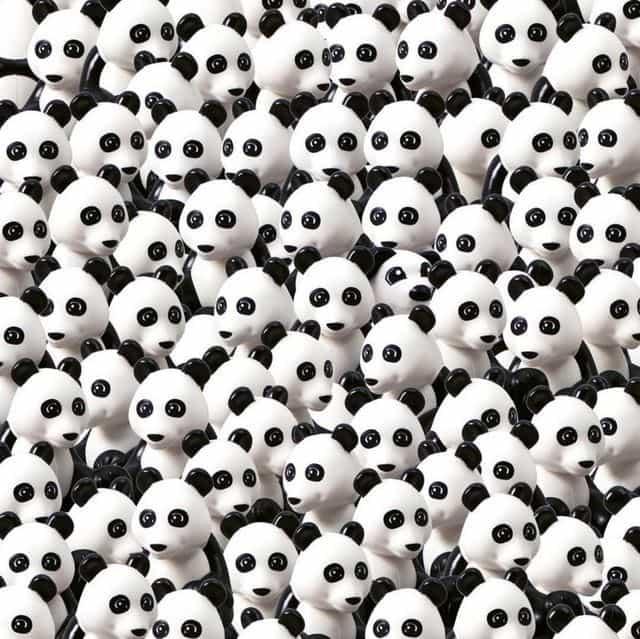 Tu găsești cățelul printre urșii panda? Provocarea LEGO de pe Instagram