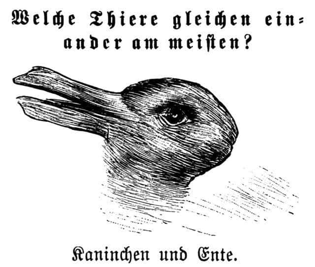 Ce vezi? O rață sau un iepure? Iluzia optică care spune multe despre creierul tău